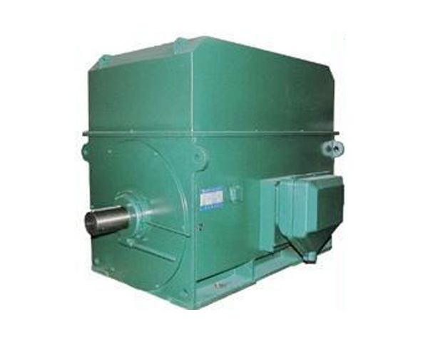 YTM系列电机